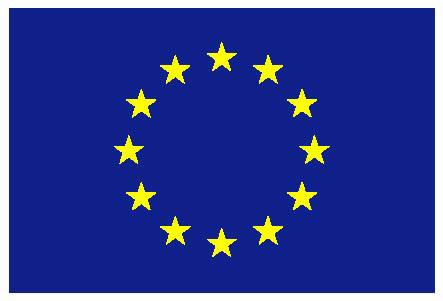 1434008536_zastava-eu-niska-rezolucija